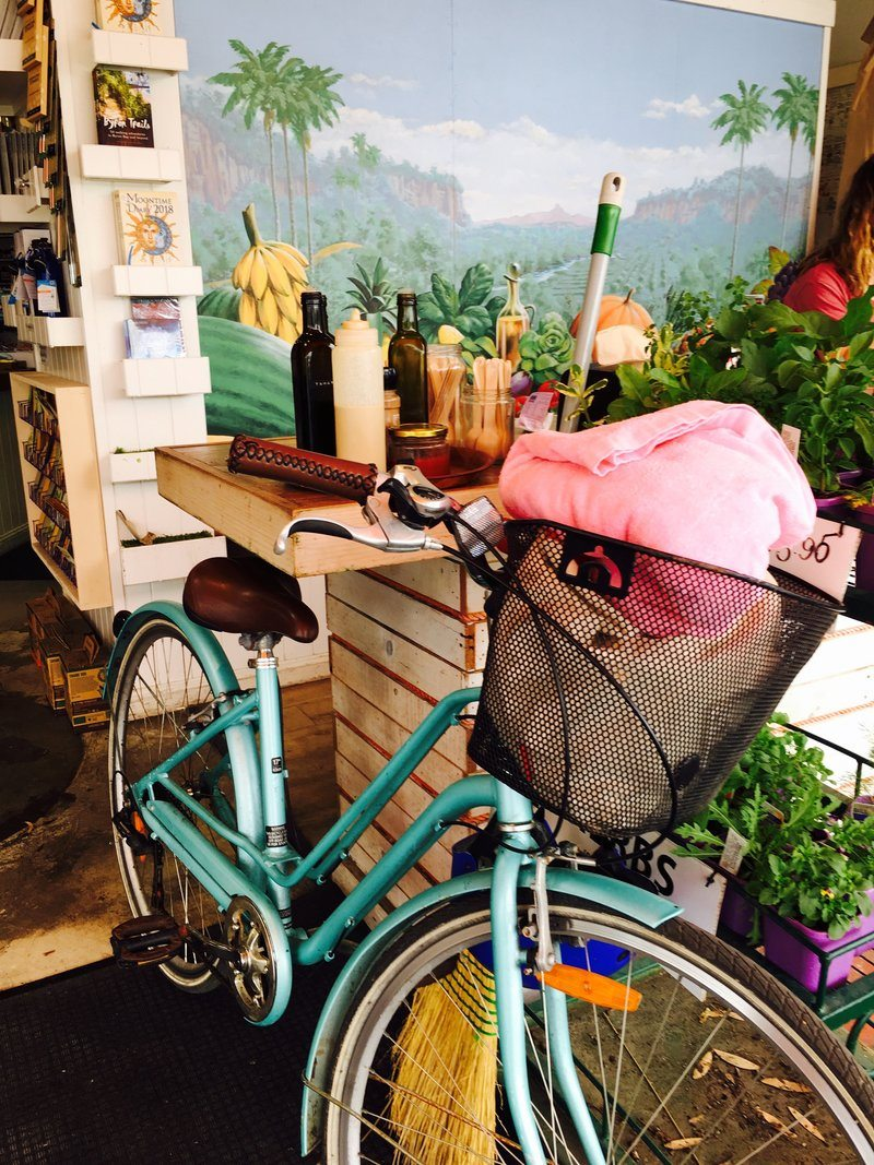 A Bicycle In A Flower Shack
