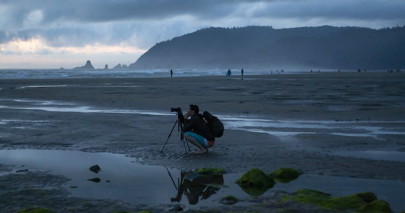 A Photographer Crouches At His Tripod On A Misty Beach