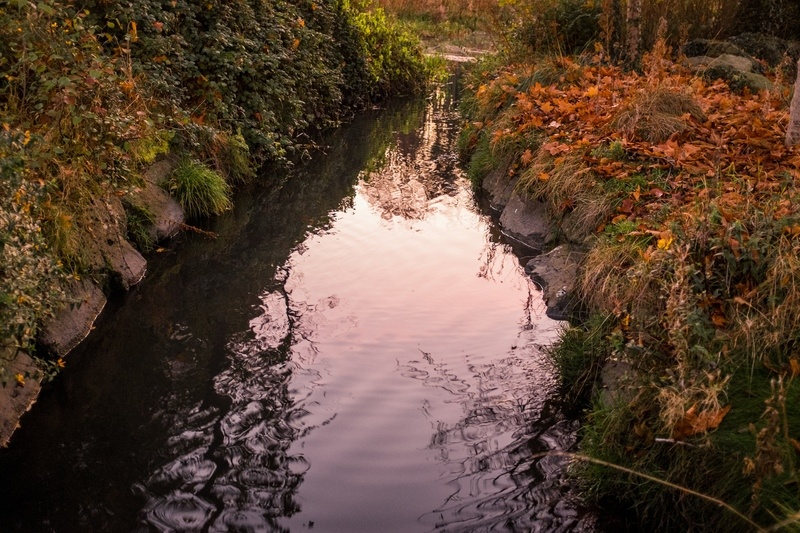 Autumn Leaves River Reflection