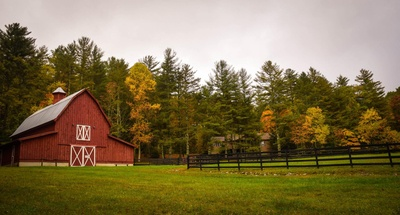 Barn Surrounded By Trees