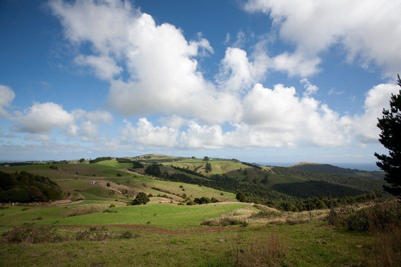 Blue Skies And Rolling Hills