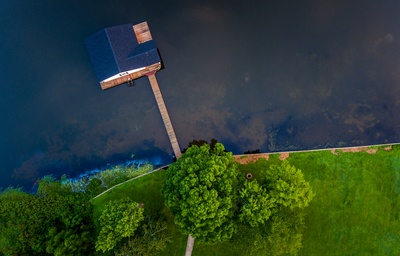 Blue Wooden House in Water Near Green Trees