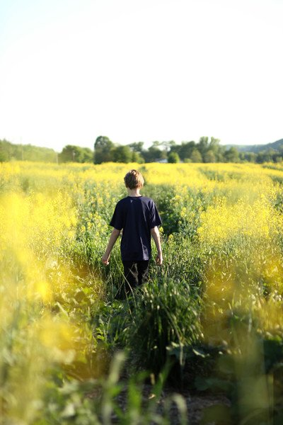 Boys Walking in Yellow Flower Field During Dayitme