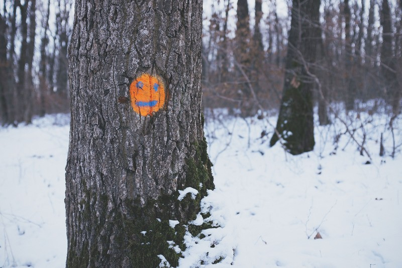 Brown Tree with Orange Emoticon