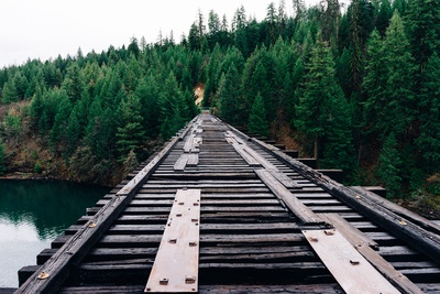 Brown Wooden Railroad Bridge Near the Forest During Day