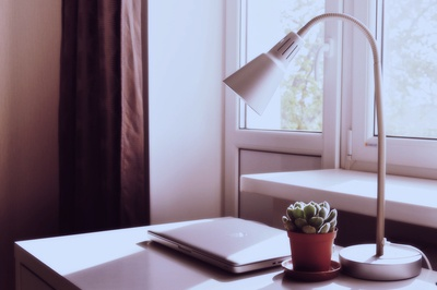 Closed Silver Macbook on Table Near Plant And Desk Lamp