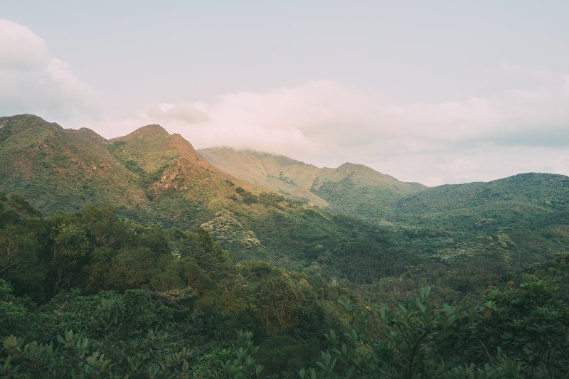 Clouds Rolling Over Rich Verdant Mountains