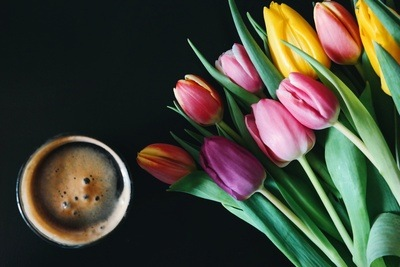 Coffee & Tulips Flowers
