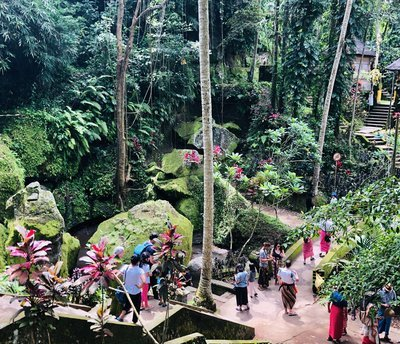 Crowds In A Lush Botanical Garden
