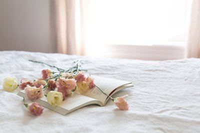 Daylight On Book & Blooms