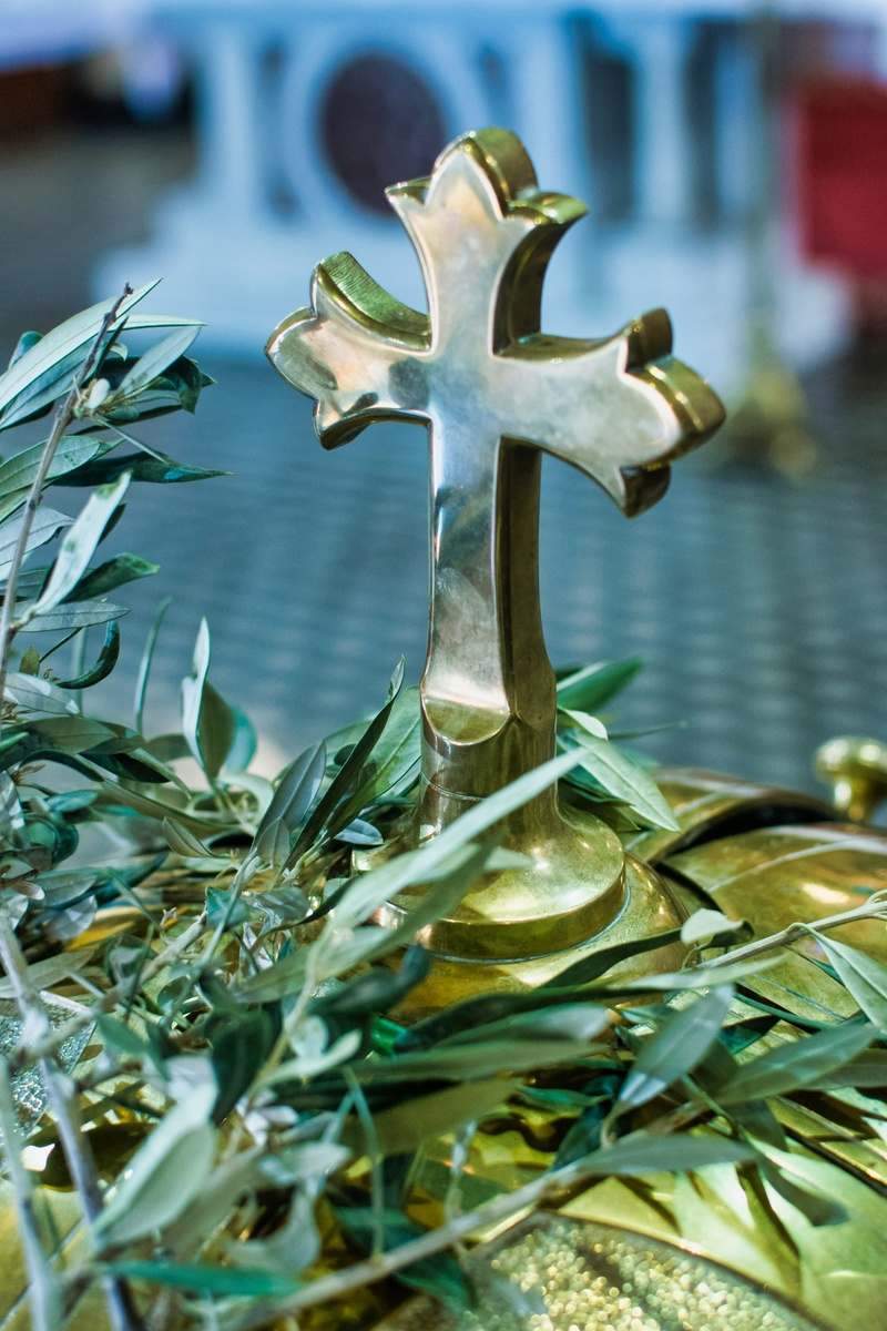 From the Olive Tree to the Cross