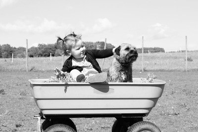 Girl Holding Puppy on Wagon Toy