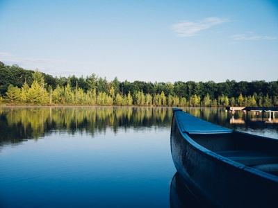 Grey Canoe on Calm Water Near Tall Trees At