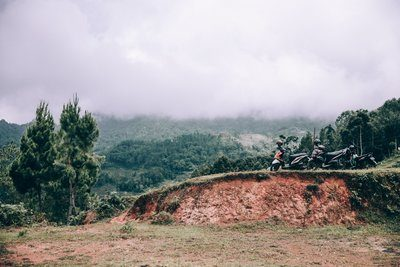 Group Of Touring Motorbikes Parked Along Jungle Roadway