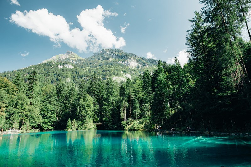 Lake, Forest, Mountains & Clouds