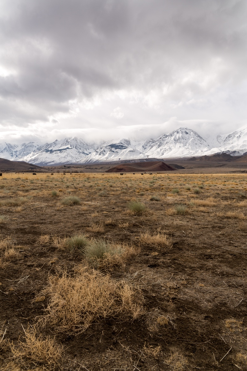 Landscape  Dry Grass Field And Mountains