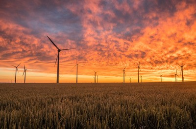 Landscape Photography of Grass Field with Windmills
