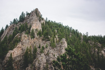 Landscape Photography of Mountain And Trees