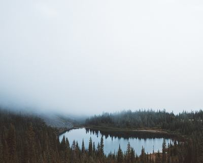 Landscape Photography of Water Between Trees Under Foggy Sky
