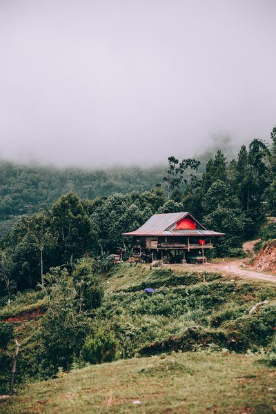 Large Open Home Along The Edge Of The Jungle