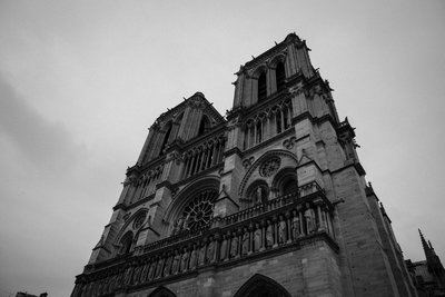 Looking Up At Notre Dame