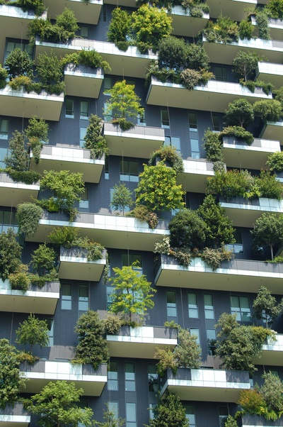 Low Angle  Gray Building with Green Plants