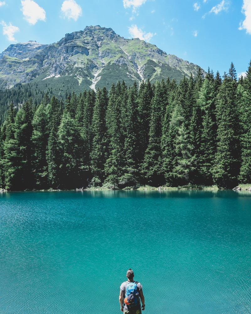 Man Looking Through on Lake with Pine Trees