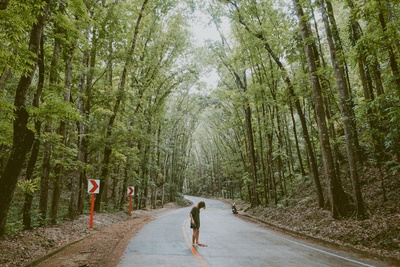 Person Standing in the Street with Trees Beside It