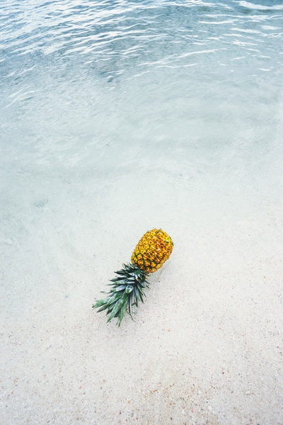 Ananas am Seashore