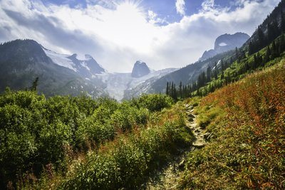 Rocky Mountain Path Framed By Greenery And Bathed In Sunlight