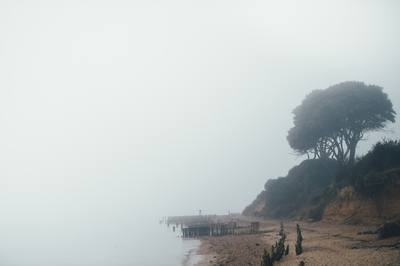 Sea During Foggy Day
