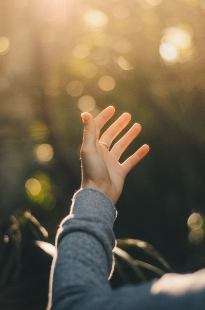 Shallow Focus Photography of Person Raising Hand