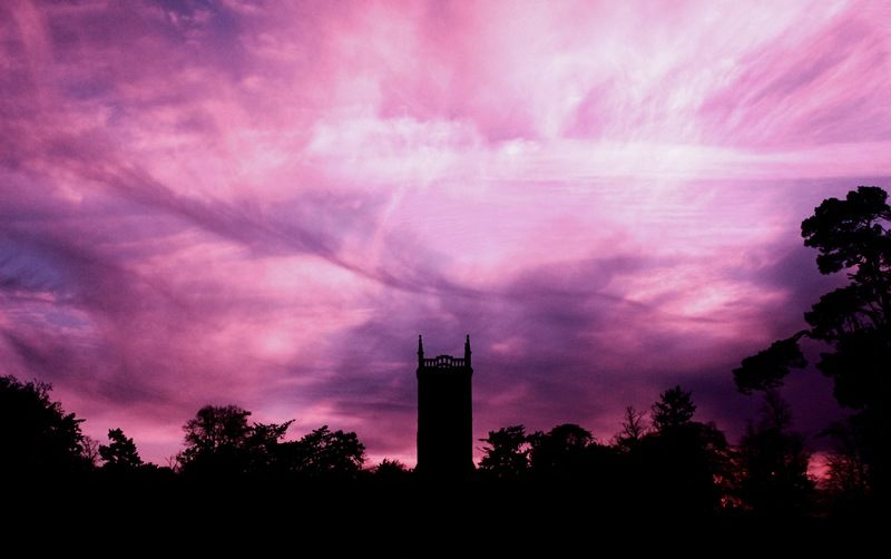 Silhouette  Trees And Building Under Purple Sky