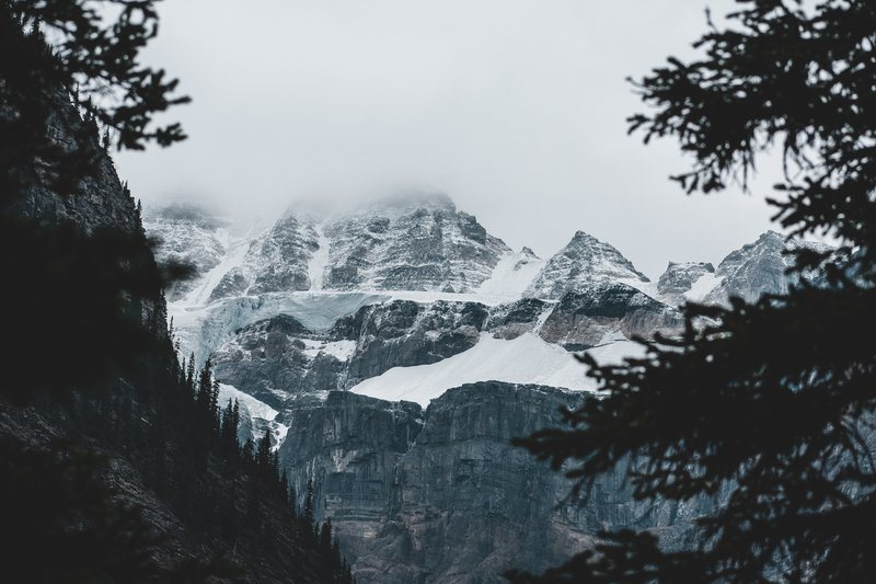 Snow Capped Mountains Seen Through The Trees