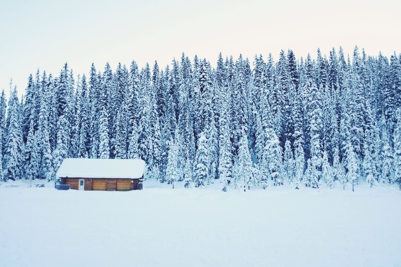 Snow Covered Brown Wooden House Near Trees