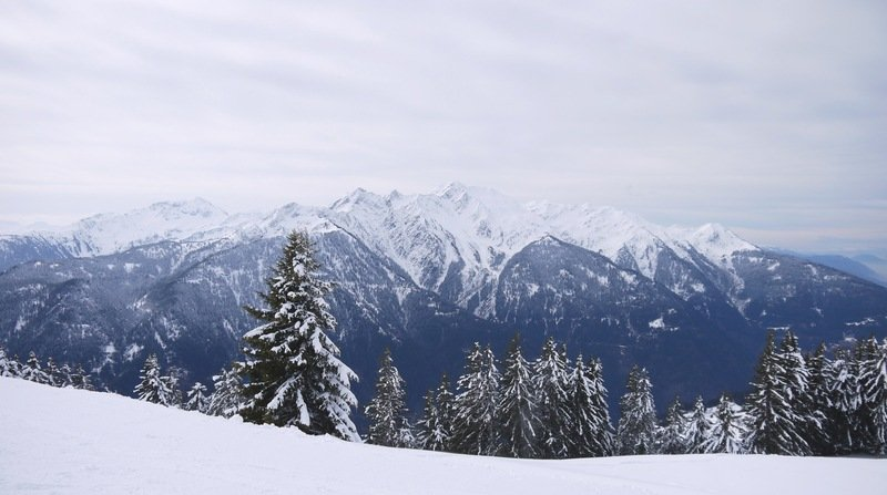 Snowy Forest And Mountains