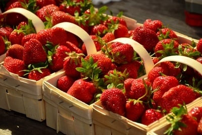 Strawberry Boxes