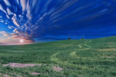 Time Lapse Photography of Green Field And Clouds