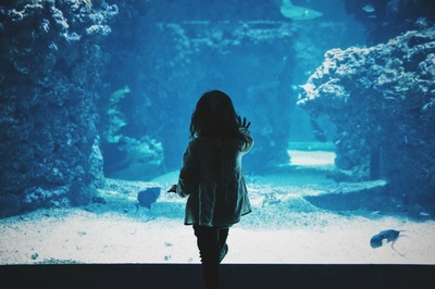 Toddler Girl Touching Glass Tank