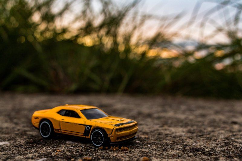 Toy Sports Car With Tall Grass