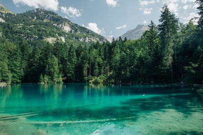 Transparent Mountain Lake