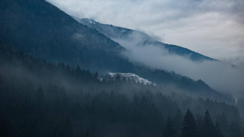 Trees on Side of Mountain Covered with Fog