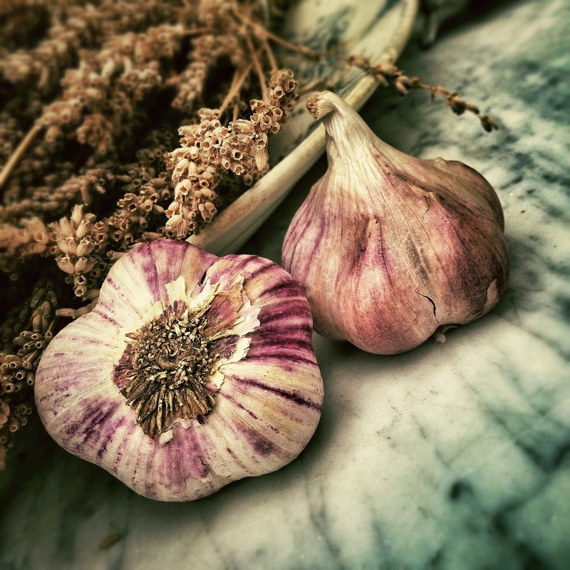 Two Garlic in Shallow Focus