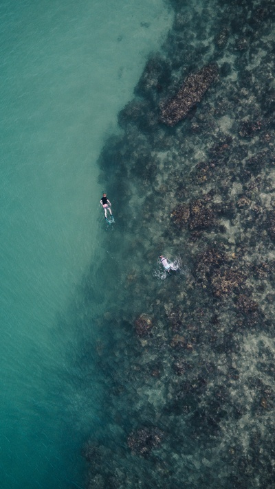 Two People Swimming on the Sea