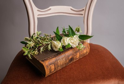 White Roses on Brown Book