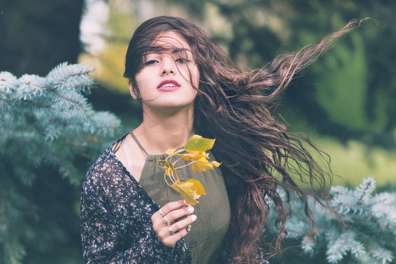 Woman Holding Green Plant in Shallow Focus