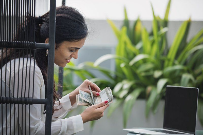 Young Entrepreneur Counting Money