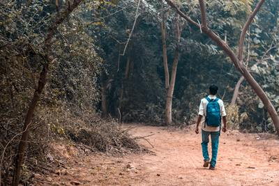Man walking alone in the forest
